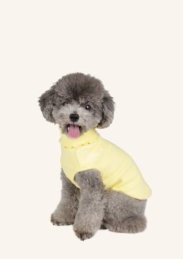 마카롱프릴 슬리브_yellow